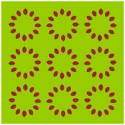 Optical Illusion - 19