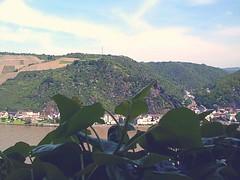 1 ST GOAR 2002 (PHOTOPHANATIC1) Tags: rhineriver stgoarhausen