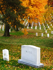 Rest. (jadded_cat) Tags: autumn green yellow washingtondc memorial wise wisdom tombstones arlingtoncemetary