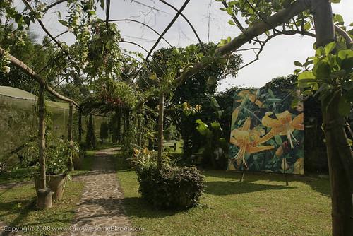 Moon Garden, Tagaytay-13