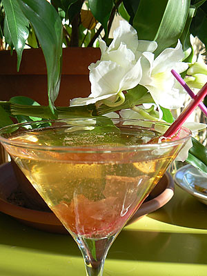 cocktail rose 1.jpg