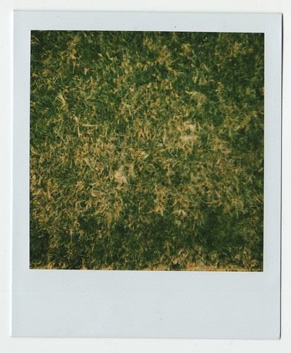 Welborn Grass: 5:37