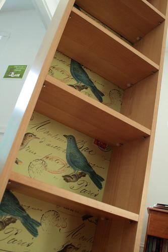 Birdcase