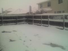 Wet Snow