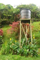 IMG_1301 (chamkhangwey) Tags: cameronhighlands teagarden boh