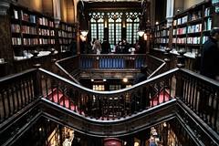LIBRERIA LELLO PORTO (ameliapardo) Tags: librerias porto portugal cultura historia libros arquitectura madera