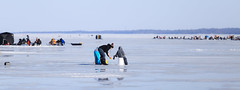 Family Fun Day (Note-ables by Lynn) Tags: icefishing ice kempenfeldtbay barrie familyfun winter winterlandscape