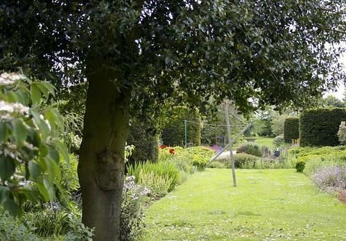 gardenpeek1