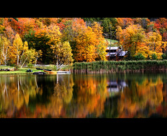 Copper Pond (Anne Strickland) Tags: autumn color fall reflections pond sos bec reflexions soe naturesbest globalvillage smorgasbord 10faves views600 creativephoto 35faves passionphotography platinumphoto 200750plusfaves superbmasterpiece goldenphotographer diamondclassphotographer lunarvillage thegoldenmermaid thegardenofzen emozioniacolorioremotionsincolours fdream avision