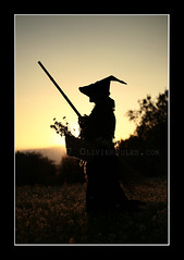 Autumn's Witch (Olivier Jules) Tags: flowers sunset hat silhouette blog myspace ring favourites deviantart asd controluce cappello facebook strega scopa favoriti 10faves ci33 aplusphoto favemegroup3 anxanum olivierjules