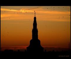 Tower (Kirsten M Lentoft) Tags: sunset tower birds bravo soe supershot mywinners abigfave frederiksborgcastle colorphotoaward aplusphoto momse2600 infinestyle frhwofavs excellentphotographerawards thegardenofzen goldstaraward kirstenmlentoft