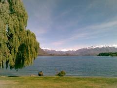 Wanaka (Lake Wanaka)