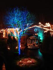 Christmas at Liseberg (kezwan) Tags: christmas gteborg sweden liseberg sverige 1on1 kezwan