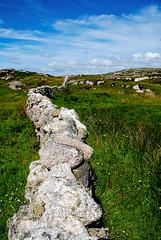 The Wall Connemara Style (Ed Guiry) Tags: ireland ed nikon youghal realireland nikond80 guiry edguiry hedirey nikond700 canong9 nikond300 youghalphotographer