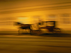 The world is a scrawl of our dreams (cctrilla) Tags: wien light horse motion luz silhouette caballo lumix austria movement europa europe carriage carro scrawl silueta viena osterreich garabato carruaje barrido alserstrasse cctrilla