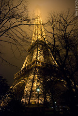 try to reach the top. (mara erlich) Tags: travel paris france tower monument weather fog architecture night lights nikon exposure torre interestingness1 frana eiffel explore excellent francia obscure magnitude 1870 travelphotography explored d80 23000views 1000faves maraerlich excellentphotographerawards themeobscured megatopofthefog 100earthcomments earthmarvels50earthfaves lightiq 1100faves wonderworldgallery
