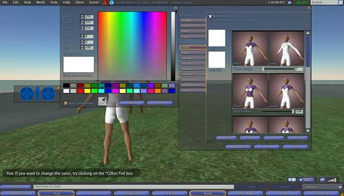 Second Life: Making Clothes: 10 - Tint Shirt, Color Selection Menu