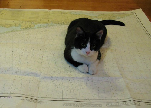Oliver on Nautical Chart