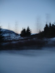 heima (apalucia) Tags: christmas blue winter sunset snow motion blur cold tree ice pine speed island evening frozen iceland europe frost dusk album north frosty arctic cover freeze fir chilly nordic sigurros chill sland heima gloaming icelandic northerly apalucia