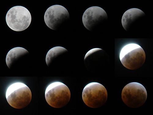 Fases del Elipse Total de Luna desde Antofagasta. Galería de http://www.flickr.com/photos/rainemaida/2281412634/