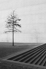 Z (g.mittelberg) Tags: house tree berlin architecture germany concrete haus explore architektur z spree baum beton paullbehaus concreto yourfavorites bton 4321 825 marieelisabethldershaus hausberlin buildingberlin berlinbuildings swbw architectureberlin berlinhaus architekturberlin berlinhuser haeuserberlin copyrightgerdmittelberg