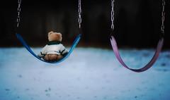 Push? (MontanaRoots (aka Craig)) Tags: diamondclassphotographer flickrdiamond swing push playground teddy bear winter canon fun