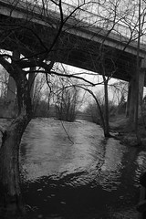 peace (Nature/Noticed) Tags: park trees light ohio white black tree nature water d50 river photography blackwhite kent spring movement nikon highway focus stream afternoon natural 21 no flash structures tagged filter waterway ξssξ®®ξ