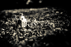 # 9 / 365 (Thomas JOUVRAY) Tags: new light france art club photography photo nikon europe foto photographie image photos thomas explore 01 farmer 365 tracteur herbe 2010 ain playmobile 2011 fermier oyonnax cavo project365 d700 jouvray
