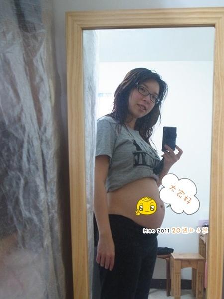 好孕照。5個月-2