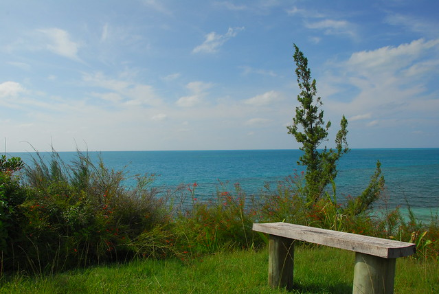 Seaside Bench