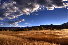Shades of Tall Grass & Clouds (Thad Roan - Bridgepix) Tags: statepark blue autumn trees light sky sunlight foothills lake mountains color fall field grass clouds skyscape landscape scenery colorado shadows meadow chatfield soe hdr littleton naturesfinest blueribbonwinner photomatix 200710 superbmasterpiece