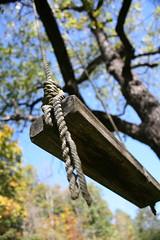 swing (Cindy シンデイー) Tags: tree dof rope swing supershot beautifulcapture anawesomeshot goldstaraward
