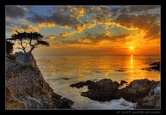 Sunset At The Lone Cypress At Pebble Beach (Mellard) Tags: ocean california sunset sea seascape water landscape coast bravo searchthebest pacific scenic explore bayarea pebblebeach lonecypress soe hdr outstandingshots 9xp mywinners anawesomeshot superhearts mellard justhitmewithyourbestshot1stplaceseptember2008photocontest