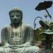 Buda. historia, leyenda y doctrina