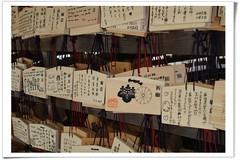 日馬富士 画像91