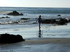 DSCF8748 (ttelfair) Tags: ocean california seascape beach landscape sand waves pacificocean beaches elmatadorstatebeach shorenature