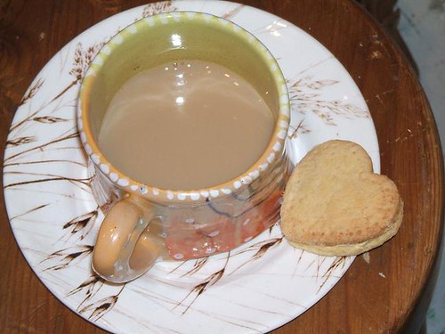 custard cream with tea