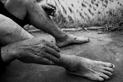 Cada nuevo dia es ms raiz y menos criatura (Sergi Bernal) Tags: china home nikon d70 chinese manos mans pies aigua arros arroz xina peus agricultor humitat cames longseng llaurador