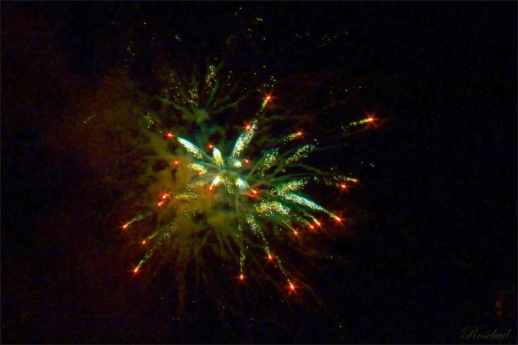 fireworks 1©2008 RosebudPenfold