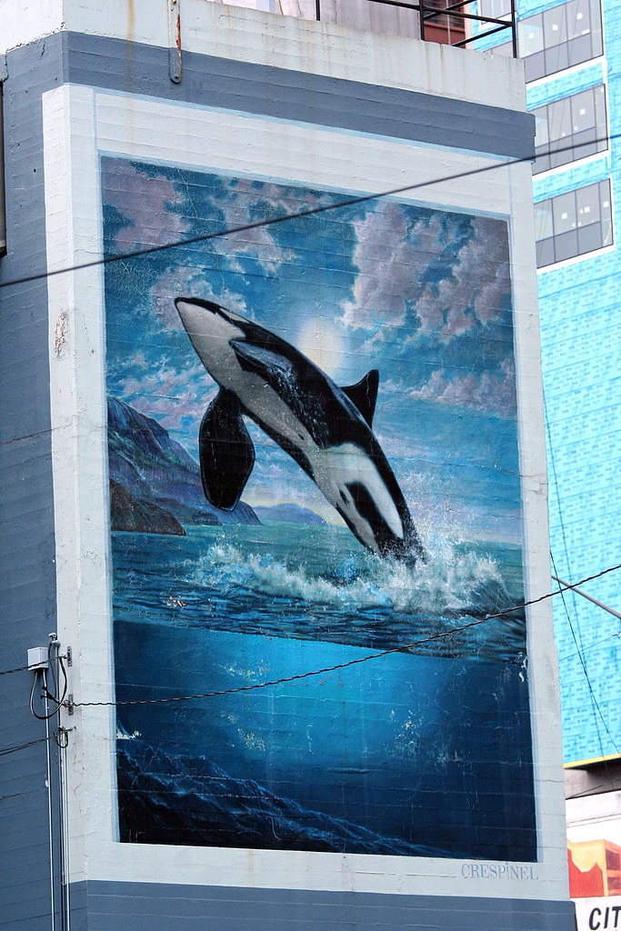 Seattle Steam Orca