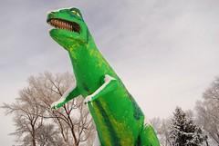 local history (pbo31) Tags: trip travel winter usa snow west color green monster statue america giant nikon colorado tour dino dinosaur january roadtrip crosscountry photograph western americana 2008 trex townsquare fruita kellygreen 81521