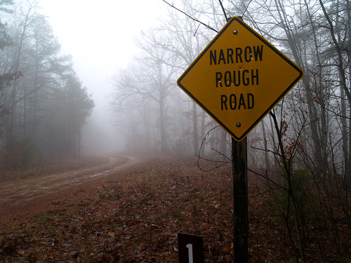 Narrow Rough Road