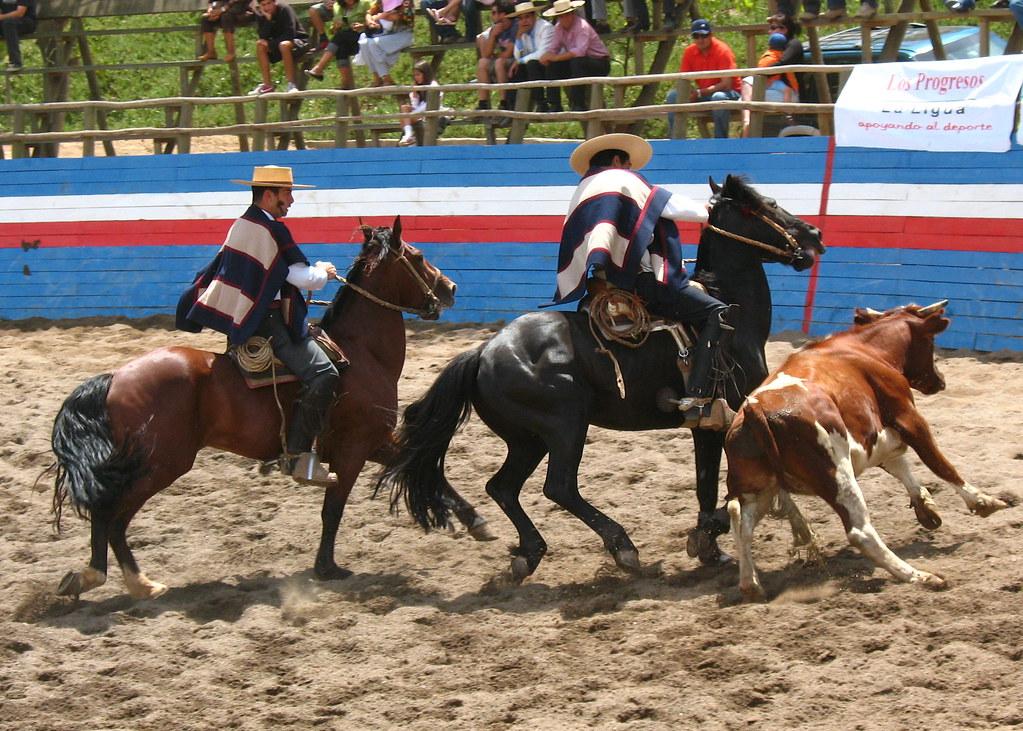 Chilean Rodeo - Chris Martino