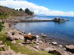 Taquile Island, Lake Titicaca, Puno, Peru (AJoStone) Tags: lake peru titicaca taquile puno