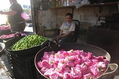 Rose petals (CharlesFred) Tags: pink roses rose petals peace market middleeast syria souk bazaar rosepetals hospitality aleppo siria honour  syrien syrie pinkroses suriye haleb  syrianarabrepublic  middenoosten   streetsofaleppo shoufsyria    welovesyria aljumhriyyahalarabiyyahassriyyah siri