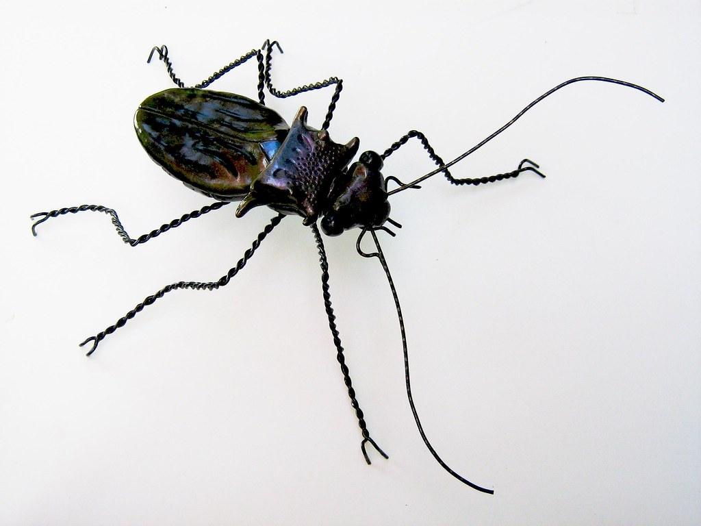 Improvised Beetle