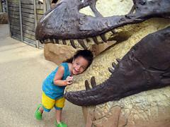 elena gets devoured by a dinosaur