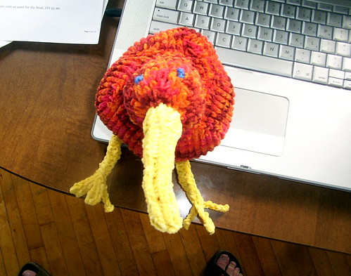 Knitted kiwi, top view.