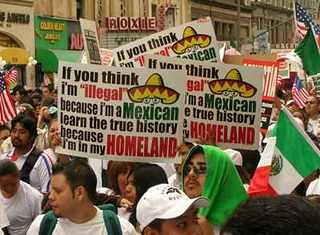 illegals,criminal invaders,protesters