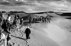 Cierra los ojos. (Color-de-la-vida) Tags: desert desierto marruecos dunas caravana ergchebbi camellos colordelavida